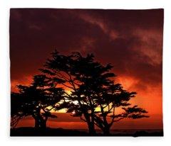 Silhouetted Cypresses Fleece Blanket
