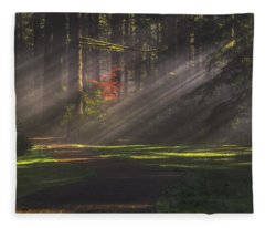 Silver Falls Historic District Fleece Blanket