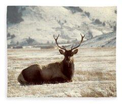 Sitting Bull Elk Fleece Blanket