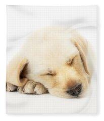 Sleeping Labrador Puppy Fleece Blanket