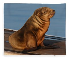 Sleeping Wild Sea Lion Pup  Fleece Blanket