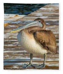 Sleepytime Pelican II Fleece Blanket