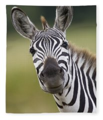 Smiling Burchells Zebra Fleece Blanket