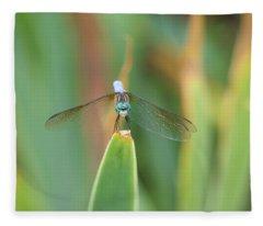 Smiling Dragonfly Fleece Blanket