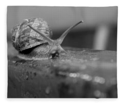 Snail Fleece Blanket