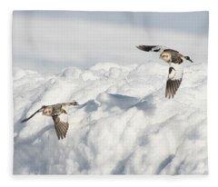 Snow Buntings In Flight Fleece Blanket