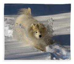Snowplow Fleece Blanket