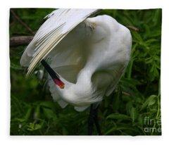 Snowy Egret Preening Fleece Blanket