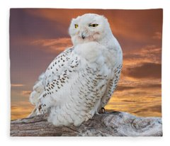 Snowy Owl Perched At Sunset Fleece Blanket