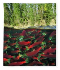 Sockeye Salmon Run Fleece Blanket