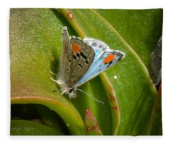 Sonoran Blue Fleece Blanket