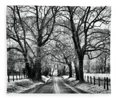 Sparks Lane During Winter Fleece Blanket