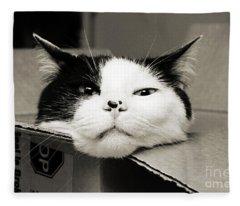 Special Delivery It's Pepper The Cat  Fleece Blanket