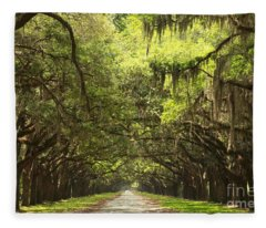 Splendid Oak Drive Fleece Blanket