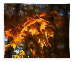 Spotlight On The Golden Maple Leaves - Fall Forest Impressions Fleece Blanket