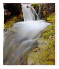 Spring Falls Fleece Blanket