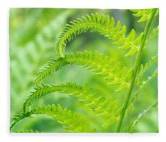 Spring Fern Fleece Blanket
