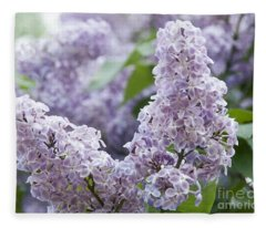 Spring Lilacs In Bloom Fleece Blanket