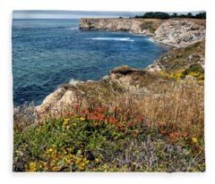 Springtime On The California Coast Fleece Blanket