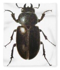 Stag Beetle Fleece Blanket