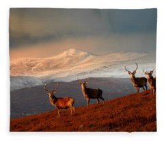 Stags At Strathglass Fleece Blanket