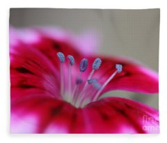 Standing Tall Sweet William Fleece Blanket