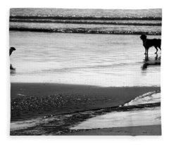 Standoff At The Beach Fleece Blanket