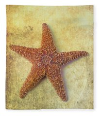 Designs Similar to Starfish Graphic by Garry Gay