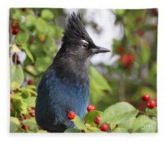 Steller's Jay And Red Berries Fleece Blanket