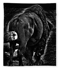 Strength Of One Fleece Blanket