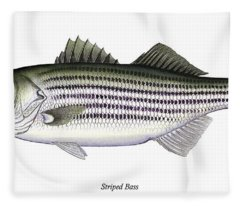 Striped Bass Fleece Blanket