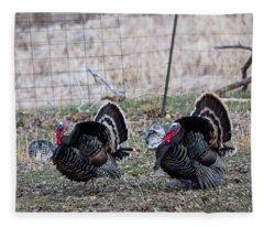 Strutting Turkeys Fleece Blanket