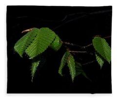 Summer Leaves On Black Fleece Blanket