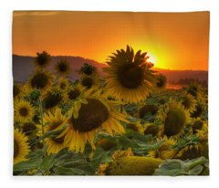 Sunflower Sun Rays Fleece Blanket