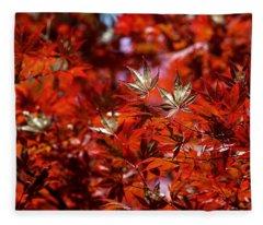 Sunlit Japanese Maple Fleece Blanket