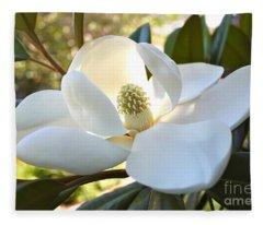 Sunlit Southern Magnolia Fleece Blanket
