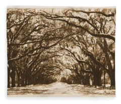 Sunny Southern Day With Old World Framing Fleece Blanket