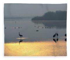 Sunrise Over The Hula Valley Israel 1 Fleece Blanket