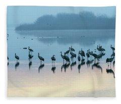 Sunrise Over The Hula Valley Israel 5 Fleece Blanket