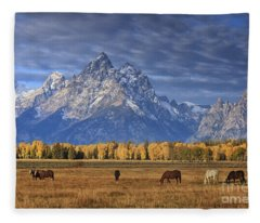 Sunrise Grazing Fleece Blanket