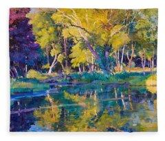 Sunset In Hinsdale Park Fleece Blanket