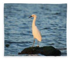 Sunset Island Fleece Blanket