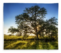 Sunset Oak Fleece Blanket