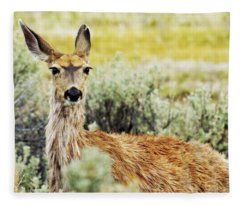 Surround Sound Fleece Blanket