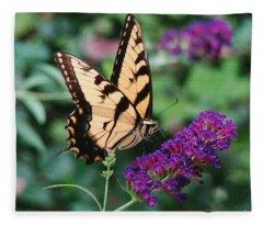 Swallowtail Butterfly 1 Fleece Blanket
