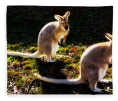 Red-necked Wallabies Fleece Blanket