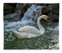 Swan A Swimming Fleece Blanket