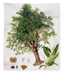 Sweet Chestnut Fleece Blanket