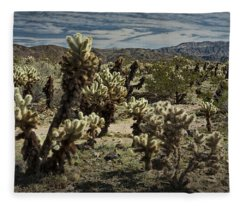Teddy Bear Cholla Cactus In California 0251 Fleece Blanket
