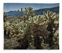 Teddy Bear Cholla Cactus In California 0263 Fleece Blanket